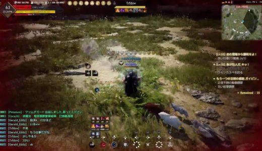 PS4おすすめ[黒い砂漠]MMORPGオンラインゲーム